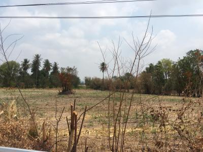 ที่ดิน 170000 อุทัยธานี บ้านไร่ หูช้าง